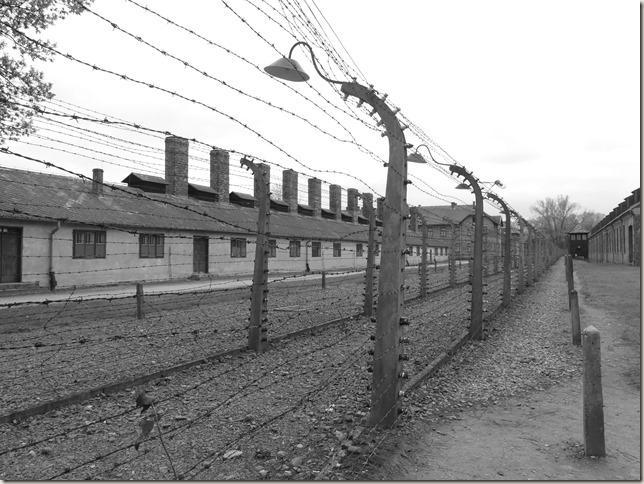 Auschwitz (113)