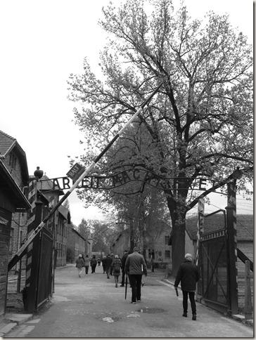 Auschwitz (116)