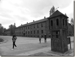 Auschwitz (19)