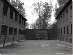 Auschwitz (30)