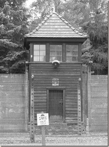 Auschwitz (48)
