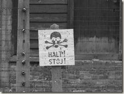 Auschwitz (49)