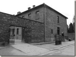 Auschwitz (50)
