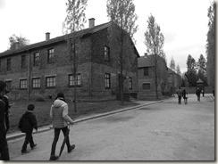 Auschwitz (52)