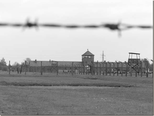 Auschwitz-Birkenau (12)