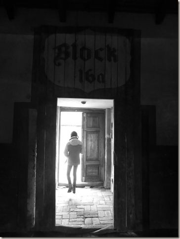 Auschwitz-Birkenau (15)