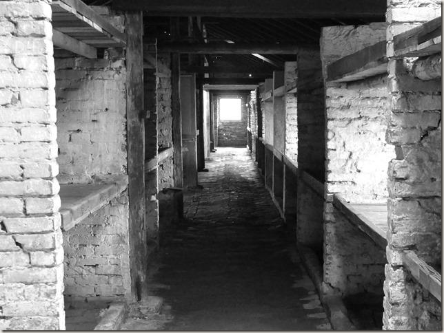Auschwitz-Birkenau (20)