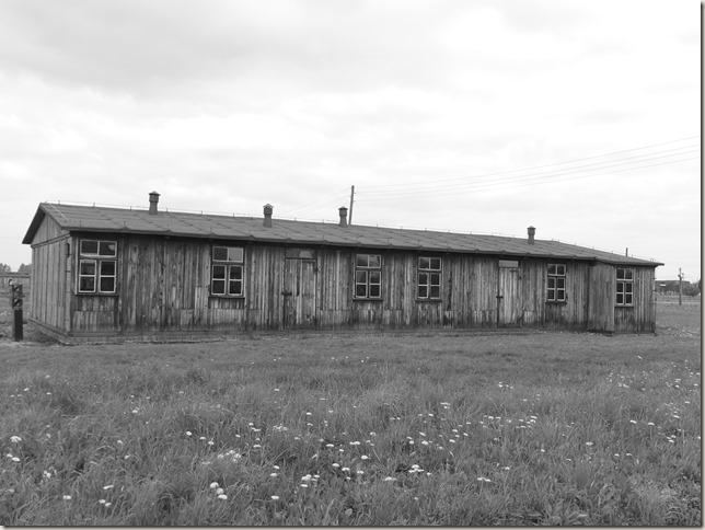 Auschwitz-Birkenau (36)