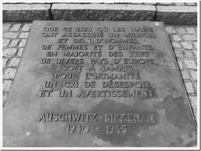 Auschwitz-Birkenau (42)