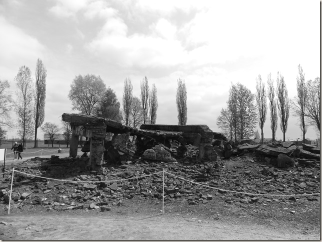 Auschwitz-Birkenau (43)