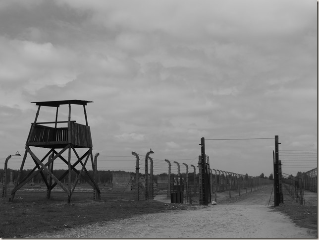 Auschwitz-Birkenau (52)