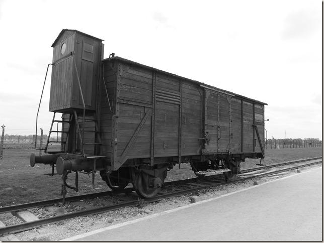 Auschwitz-Birkenau (58)