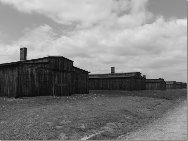Auschwitz-Birkenau (5)