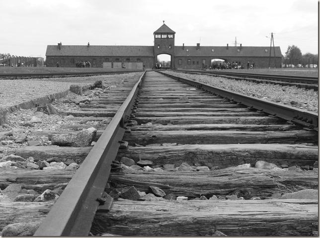 Auschwitz-Birkenau (60)