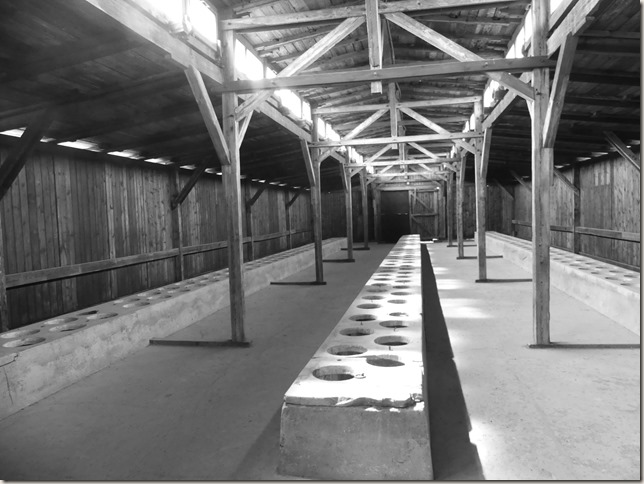 Auschwitz-Birkenau (8)