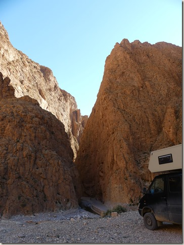 Gorges du Todgha (19)