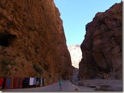 Gorges du Todgha (28)