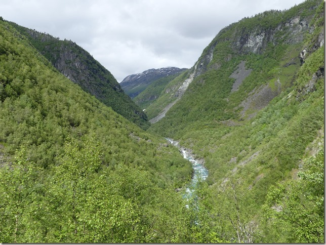 Parc national Jotunheimen (60)