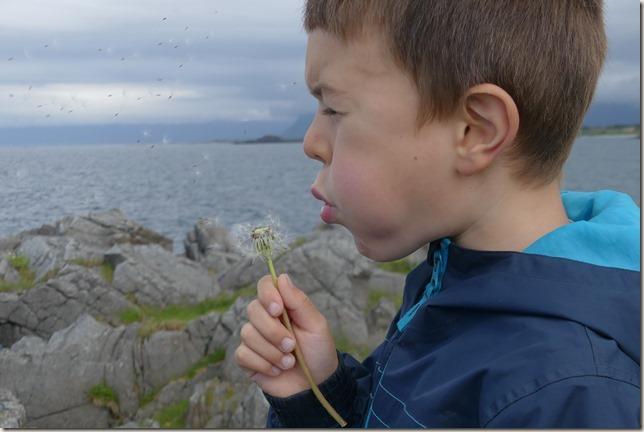 Iles Lofoten - Hovsund (16)