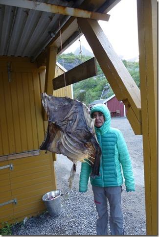 Iles Lofoten - Nusfjord (14)
