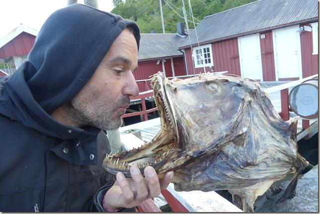 Iles Lofoten - Nusfjord (50)