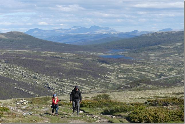 Parc National de Dovrefjell (7)