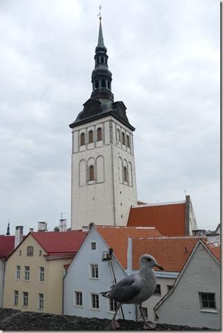 Tallinn (61)