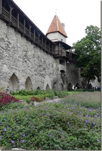 Tallinn (66)