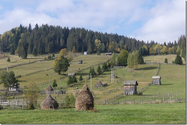 Bucovine - Ciocanesti- Chez Vladimir (9)