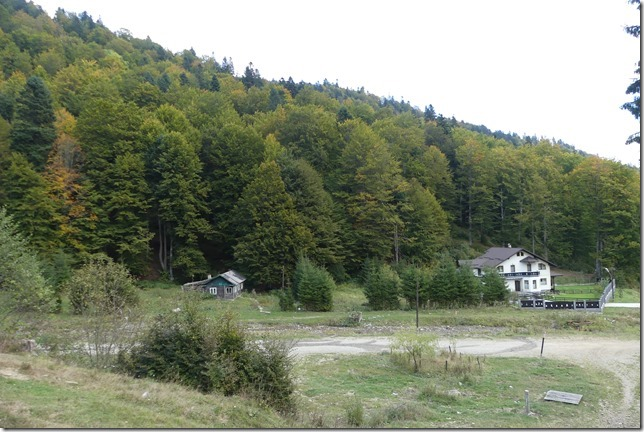 Vallée de Busteni (55)