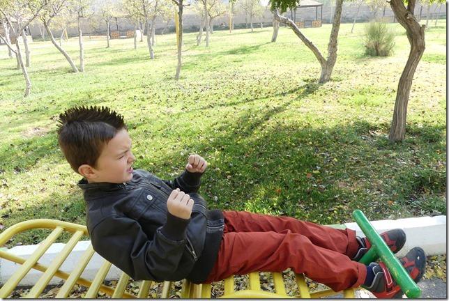 Tabriz (13)