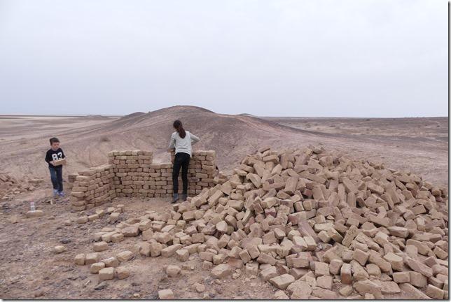 Autour Kashan - désert (180)