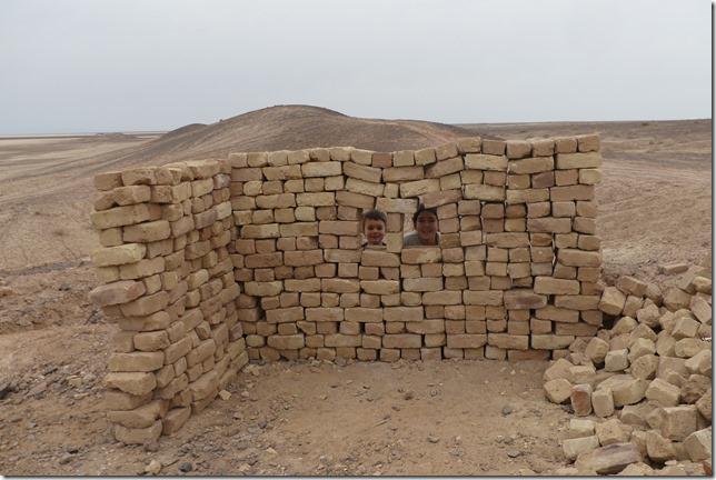 Autour Kashan - désert (187)
