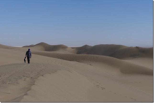 Autour Kashan - désert (238)