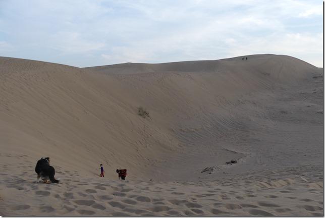 Autour Kashan - désert (23)