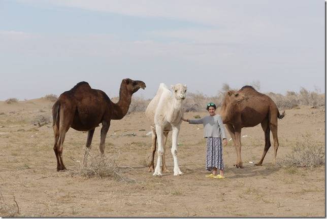 Autour Kashan - désert (254)