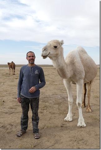 Autour Kashan - désert (259)