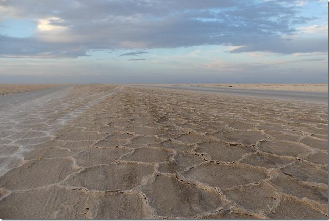 Autour Kashan - désert (275)