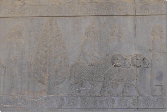 Persepolis (74)
