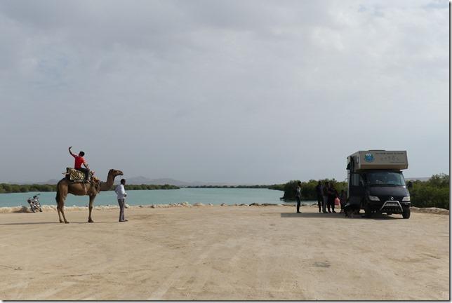 Qeshm Island (11)