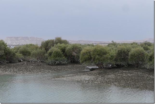 Qeshm Island (14)