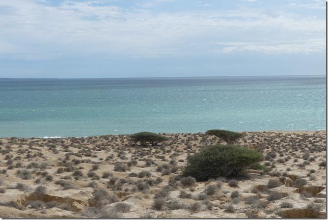 Qeshm Island (151)