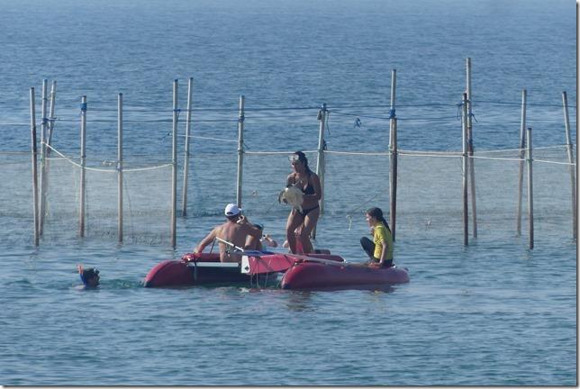 Qeshm Island (292)