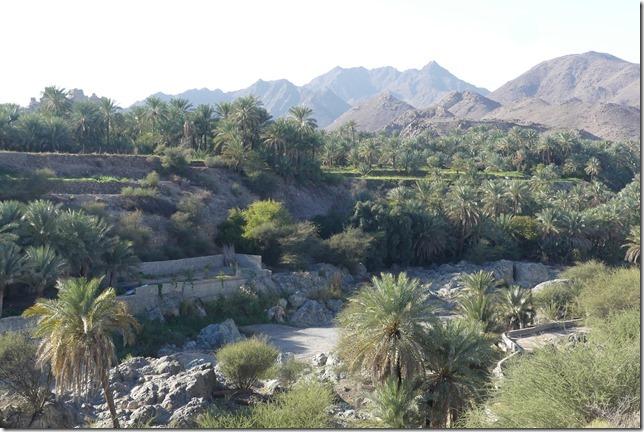 Wadi Al Hoqain (2)