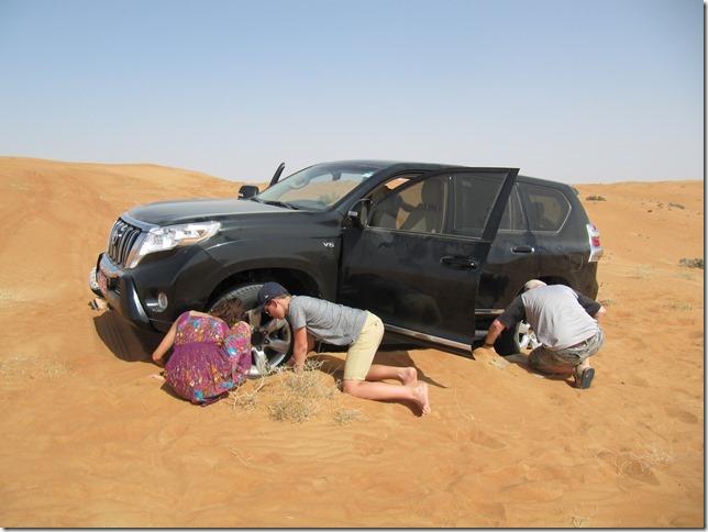 Dans le désert ! (100)