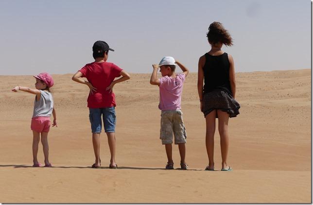 Dans le désert (110)