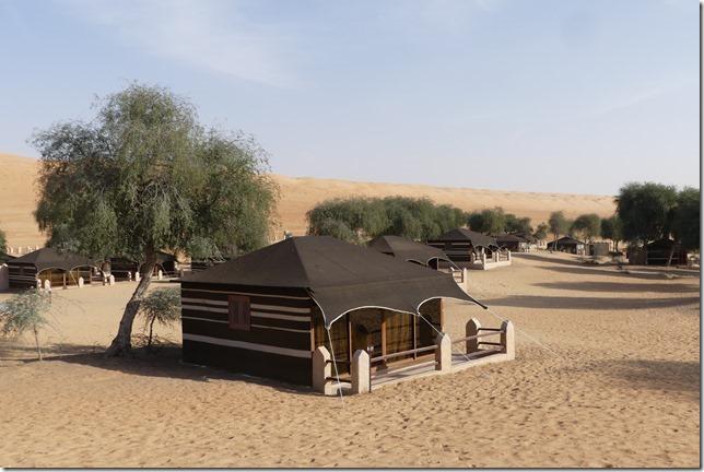 Dans le désert (139)