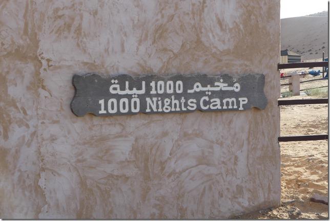 Dans le désert (146)