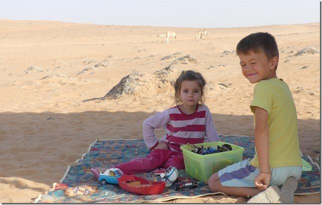 Dans le désert (153)