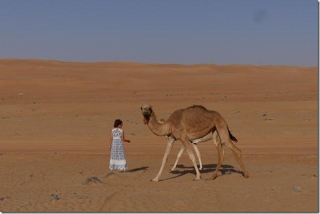 Dans le désert (157)